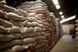 bodega coffee sacks resting warehouse fratello direct trade