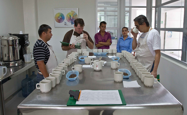 coffee cupping coocentral huila colombia direct trade