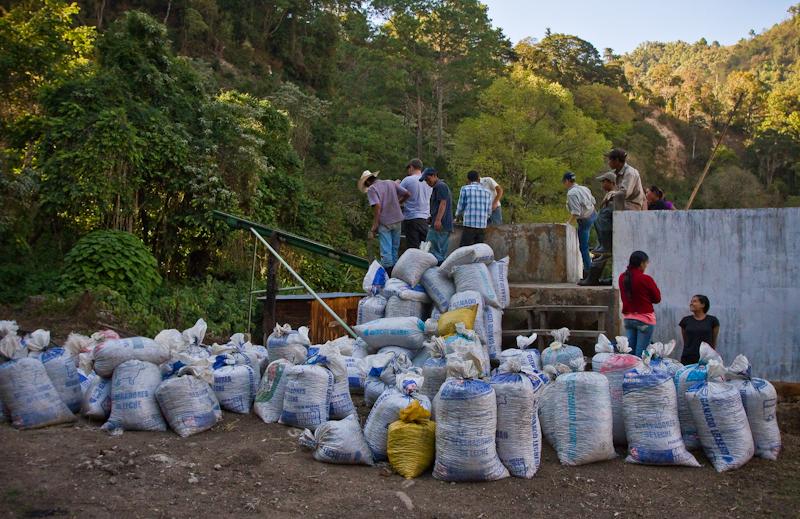 Guatemala Finca El Socorro wet mill